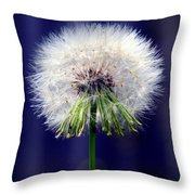 A Childs First Wish Throw Pillow