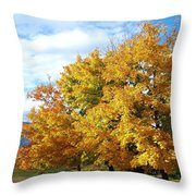 A Chromatic Fall Day Throw Pillow