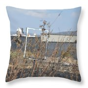 A Church In Your Future Throw Pillow