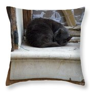 A Circled Up Cat  Throw Pillow by Lainie Wrightson