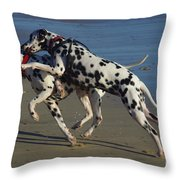 A Clash Of Wills Throw Pillow