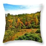A Cleveland Landscape Throw Pillow