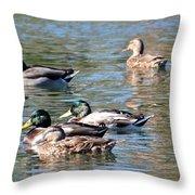 A Cluster Duck Throw Pillow