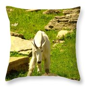 A Goat Coming Down The Trail Throw Pillow