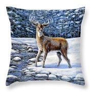 A Cold Drink Throw Pillow