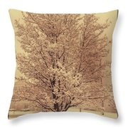 A Cold Winters Day Throw Pillow