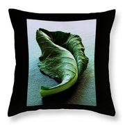 A Collard Leaf Throw Pillow by Romulo Yanes