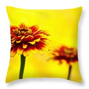 A Colorful Pair Throw Pillow