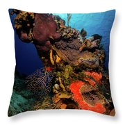 A Colorful Reef Scene With Sunburst Throw Pillow