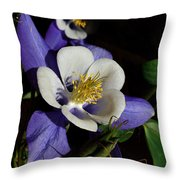 A Columbine Throw Pillow
