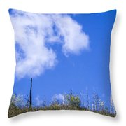 A Cotton-candy Day Throw Pillow