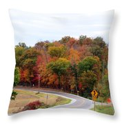 A Country Road In Autumn Throw Pillow