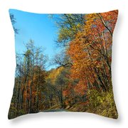 A Country Road Throw Pillow