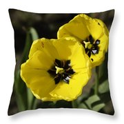 A Couple Of Bright Yellow Tulip Flowers Throw Pillow