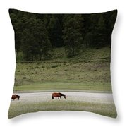 A Couple Of Horses Standing Throw Pillow