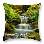 A Creek Runs Through Throw Pillow