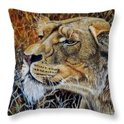 A Curious Lioness Throw Pillow