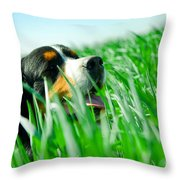 A Cute Dog In The Grass Throw Pillow