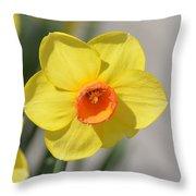A Daffodil Hello Throw Pillow