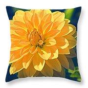 A Dahlia In Autumn Throw Pillow