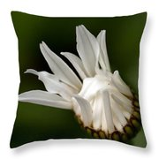 A Daisy Blooming Throw Pillow