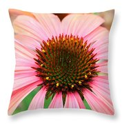 A Daisy For You Throw Pillow