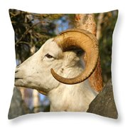 A Dall Throw Pillow