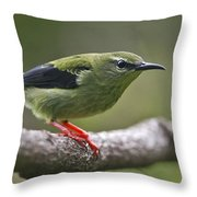 A Dash Of Red... Throw Pillow