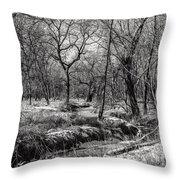 A Dash Of Snow Throw Pillow