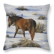 A Day In The Life Of  A Wild Horse  Throw Pillow by Jeanne  Bencich-Nations