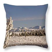 A Day Of Winter Throw Pillow