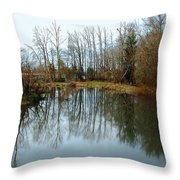 A Day To Reflect Throw Pillow