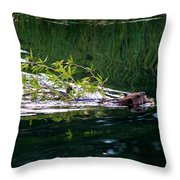 A Days Work Throw Pillow