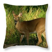 A Dear Deer Landscape Throw Pillow