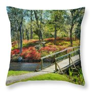 A Delightful Day Throw Pillow