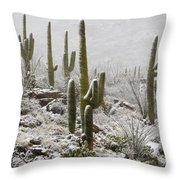 A Desert Blizzard  Throw Pillow by Saija  Lehtonen