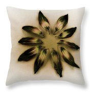 A Design Conference Throw Pillow