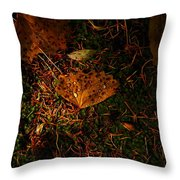 A Dew Covered Death Throw Pillow