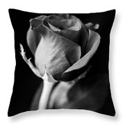 A Different Kind Of Love Throw Pillow
