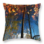A Different Side Of Autumn Throw Pillow