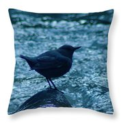 A Dipper On A Rock Throw Pillow