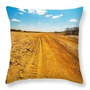 A Dirt Road In The Desert Throw Pillow