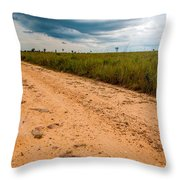 A Dirt Road In The Plains Throw Pillow