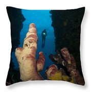 A Diver Looks Into A Cavern Throw Pillow by Steve Jones