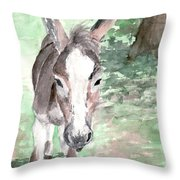 A Donkey Day Throw Pillow