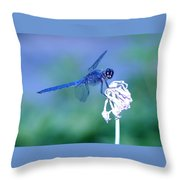 A Dragonfly V Throw Pillow