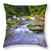 A Dream In The Stream  Throw Pillow