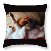 A Dream Of Reaching The Top Throw Pillow