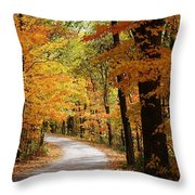 A Drive Through The Woods Throw Pillow
