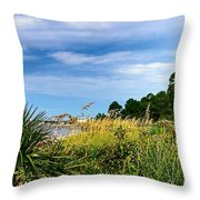 A Drive With A View Throw Pillow